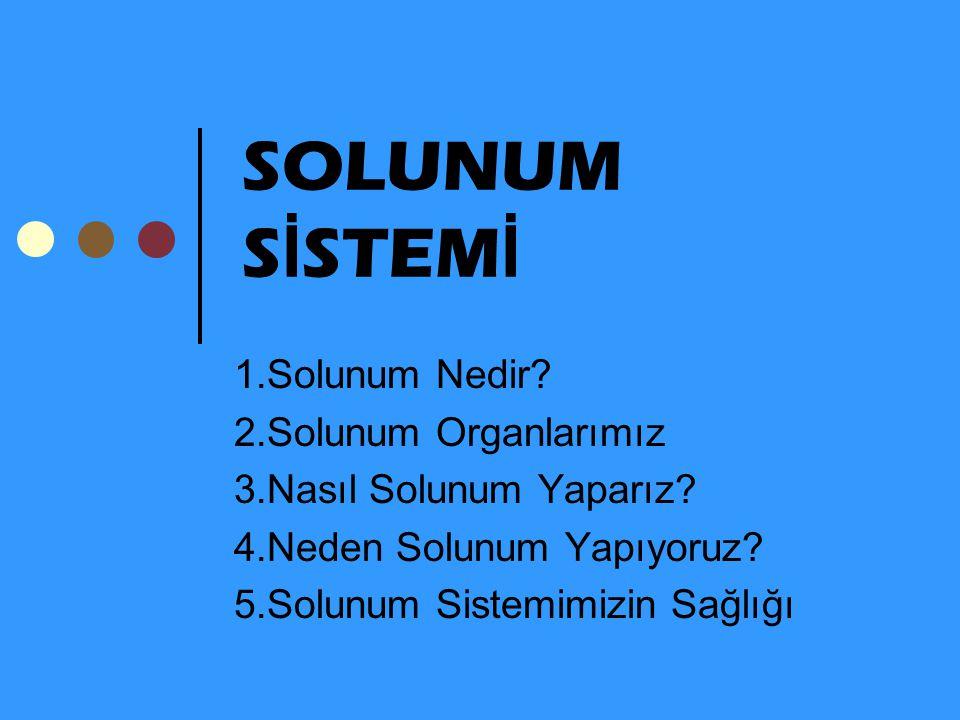 SOLUNUM SİSTEMİ 1.Solunum Nedir 2.Solunum Organlarımız