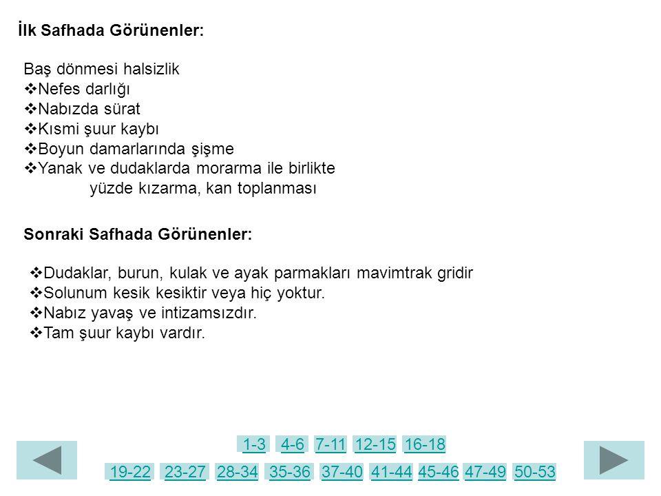 İlk Safhada Görünenler:
