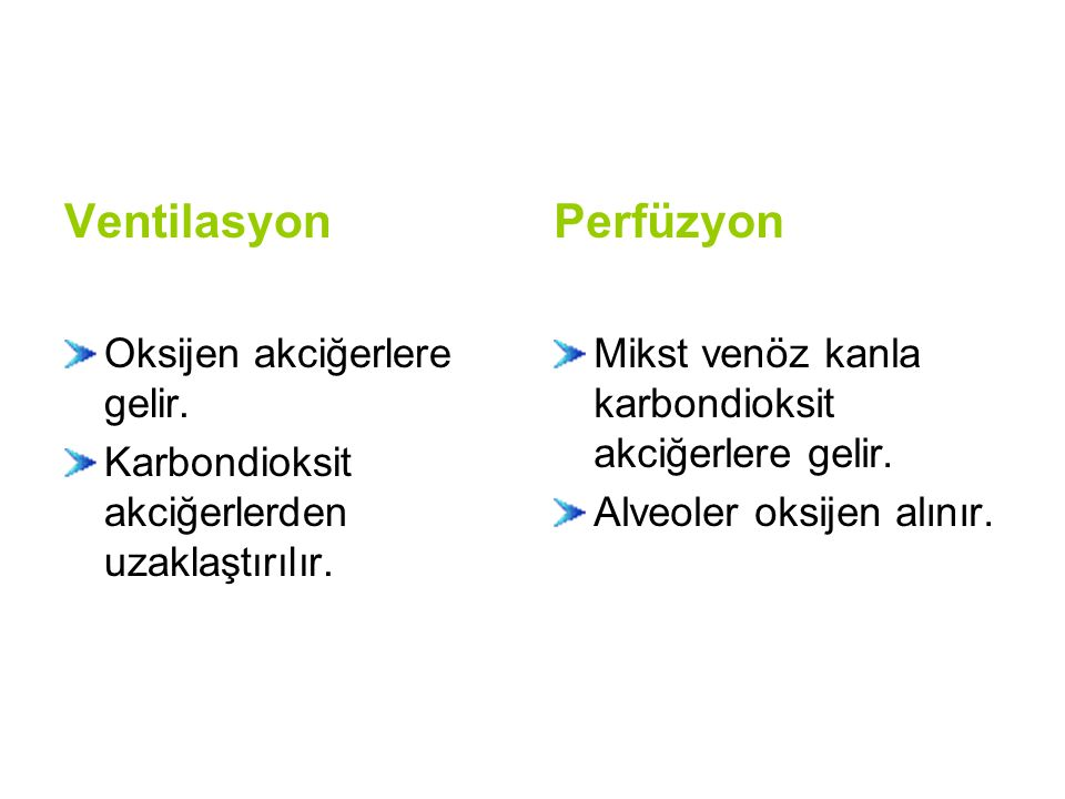 Ventilasyon Perfüzyon Oksijen akciğerlere gelir.