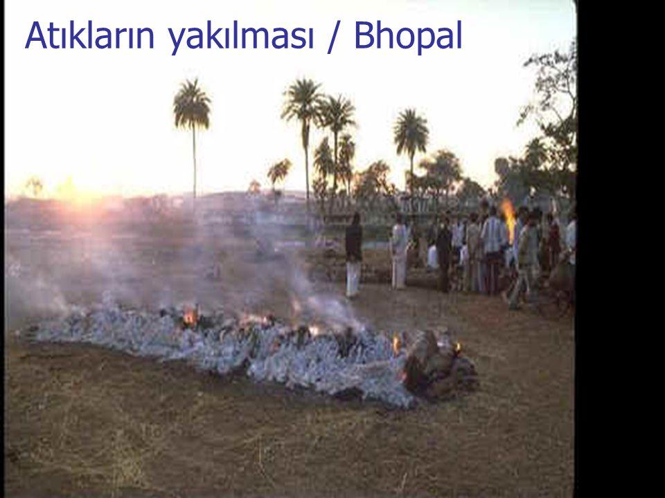 Atıkların yakılması / Bhopal