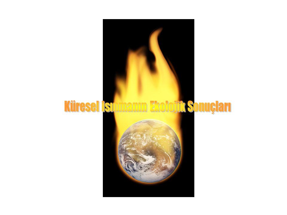 Küresel Isınmanın Ekolojik Sonuçları