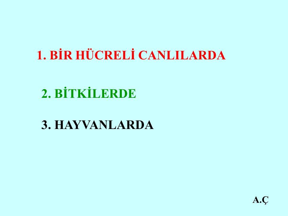 1. BİR HÜCRELİ CANLILARDA