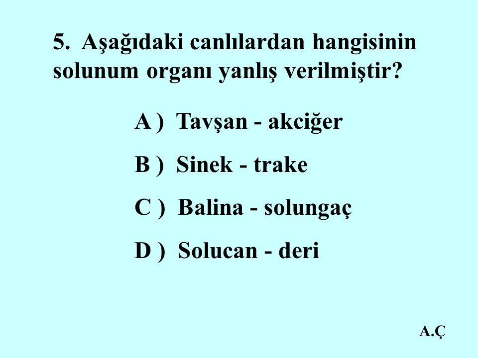 5. Aşağıdaki canlılardan hangisinin solunum organı yanlış verilmiştir