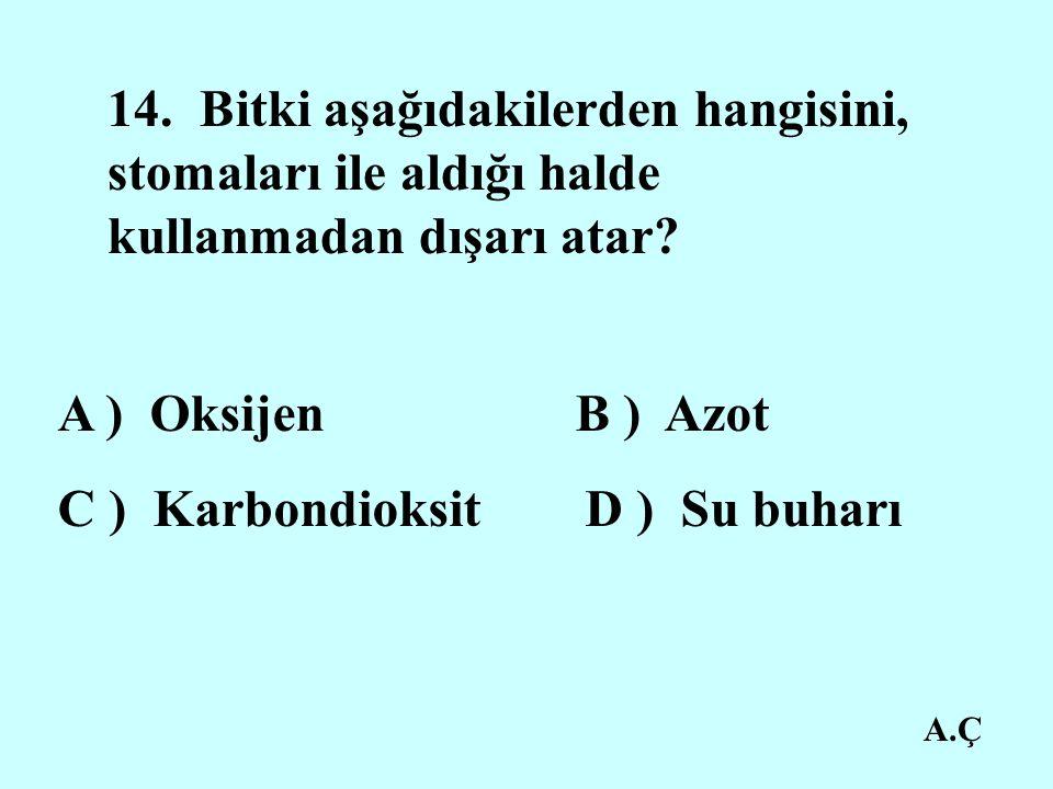 C ) Karbondioksit D ) Su buharı