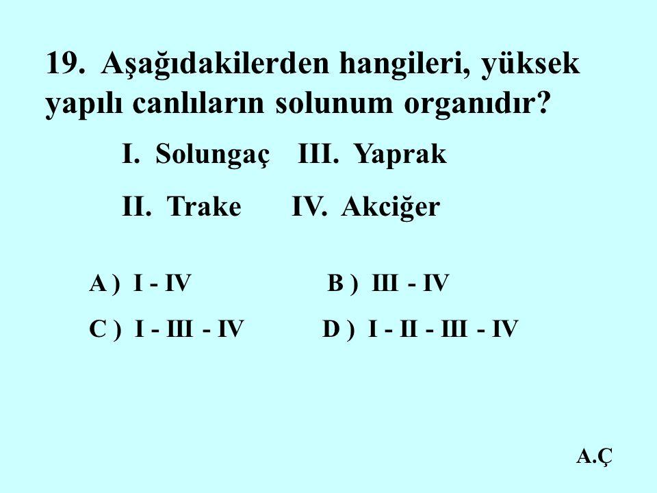19. Aşağıdakilerden hangileri, yüksek yapılı canlıların solunum organıdır
