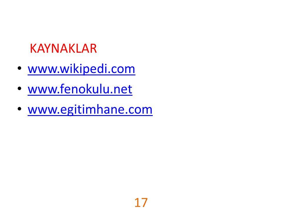 KAYNAKLAR www.wikipedi.com www.fenokulu.net www.egitimhane.com 17
