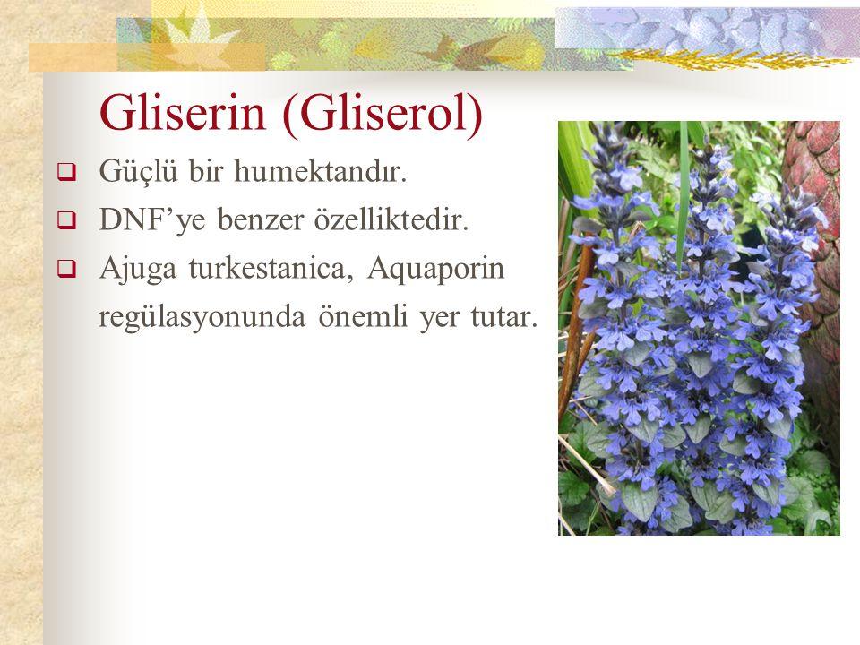 Gliserin (Gliserol) Güçlü bir humektandır. DNF'ye benzer özelliktedir.
