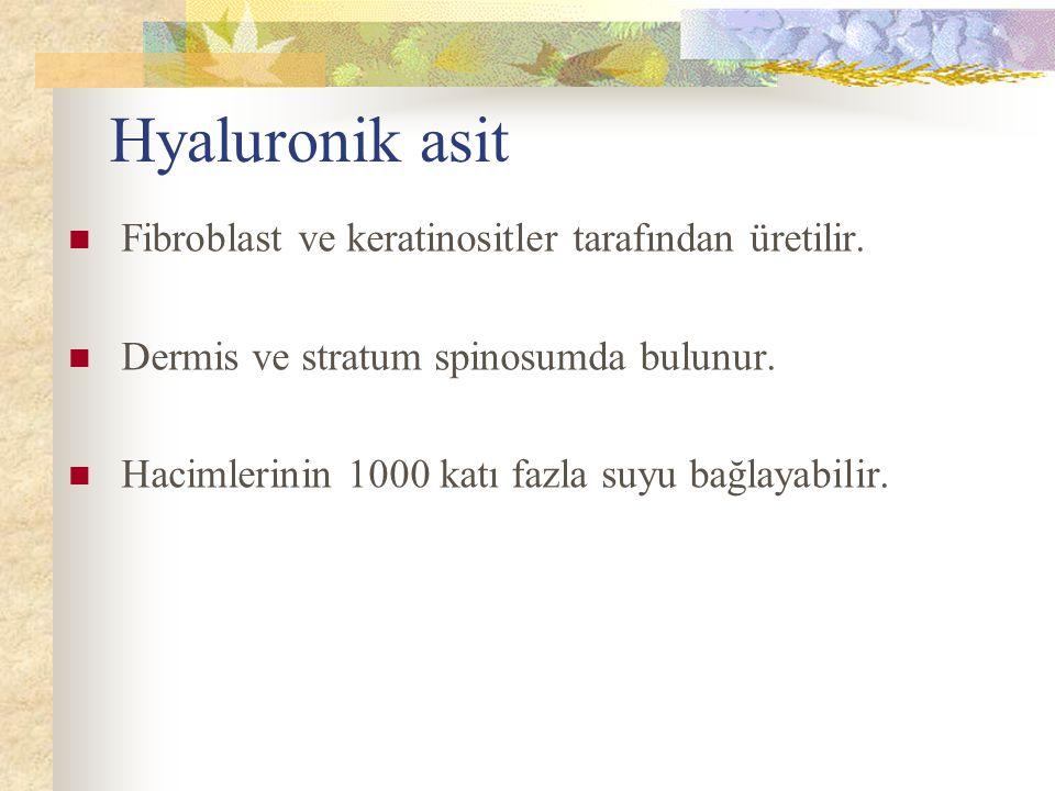 Hyaluronik asit Fibroblast ve keratinositler tarafından üretilir.