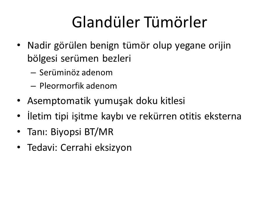 Glandüler Tümörler Nadir görülen benign tümör olup yegane orijin bölgesi serümen bezleri. Serüminöz adenom.