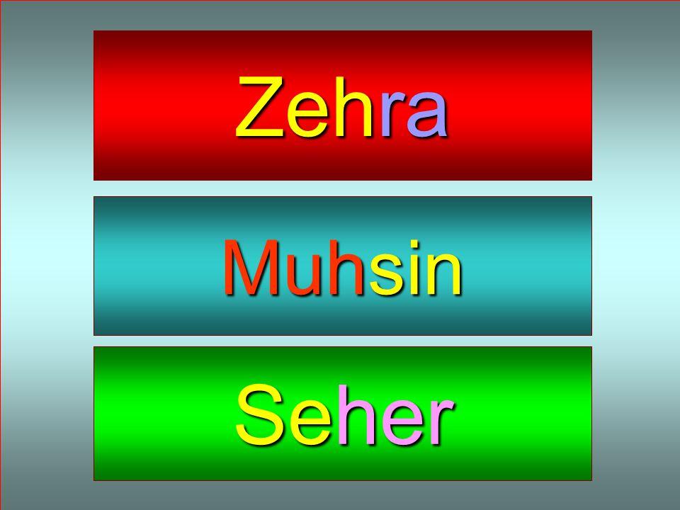 Zehra Muhsin Seher