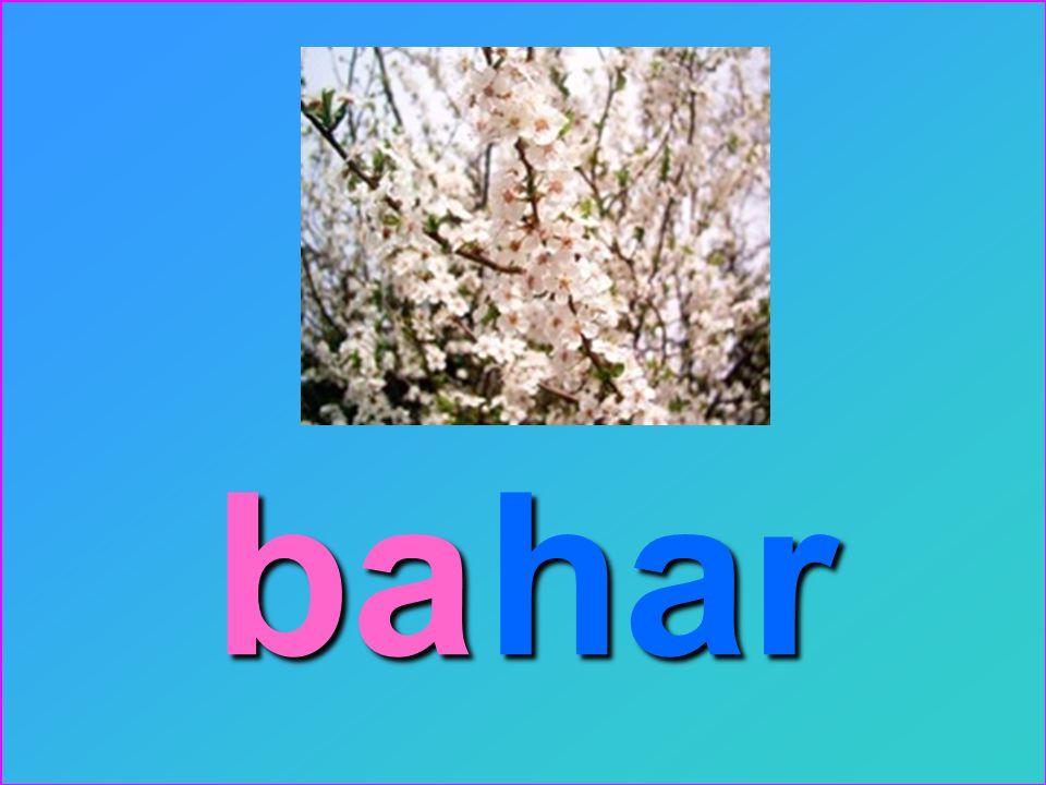 ba har