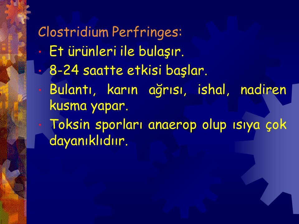 Clostridium Perfringes:
