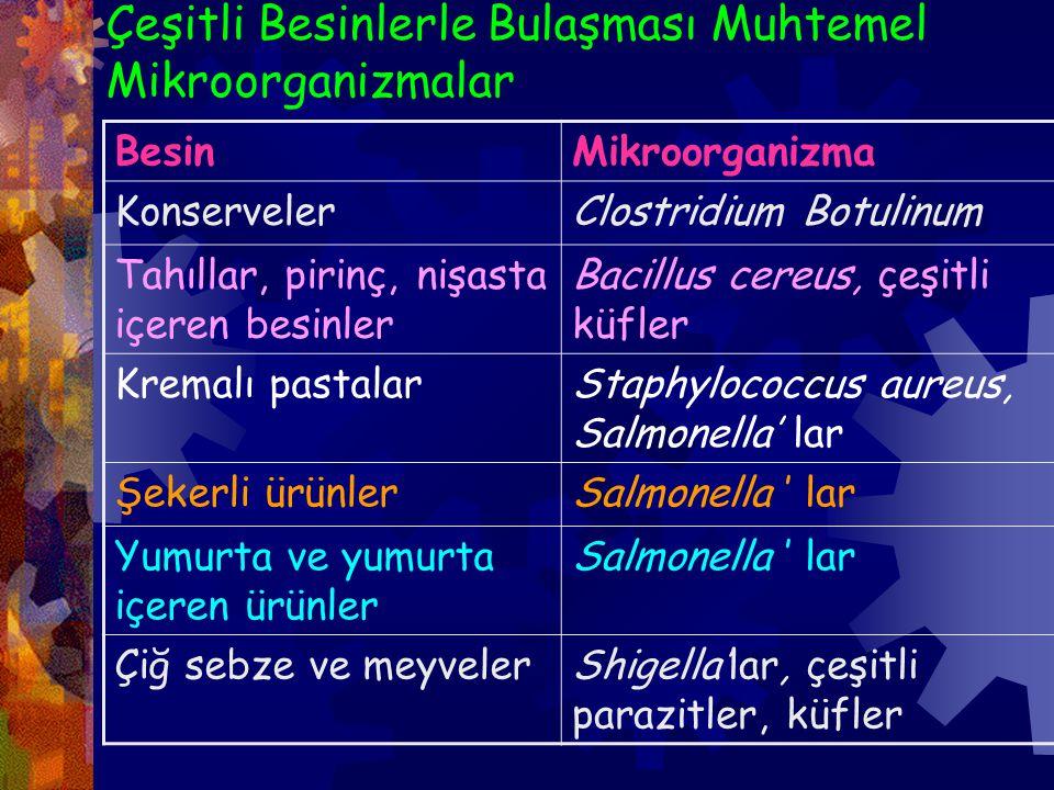 Çeşitli Besinlerle Bulaşması Muhtemel Mikroorganizmalar