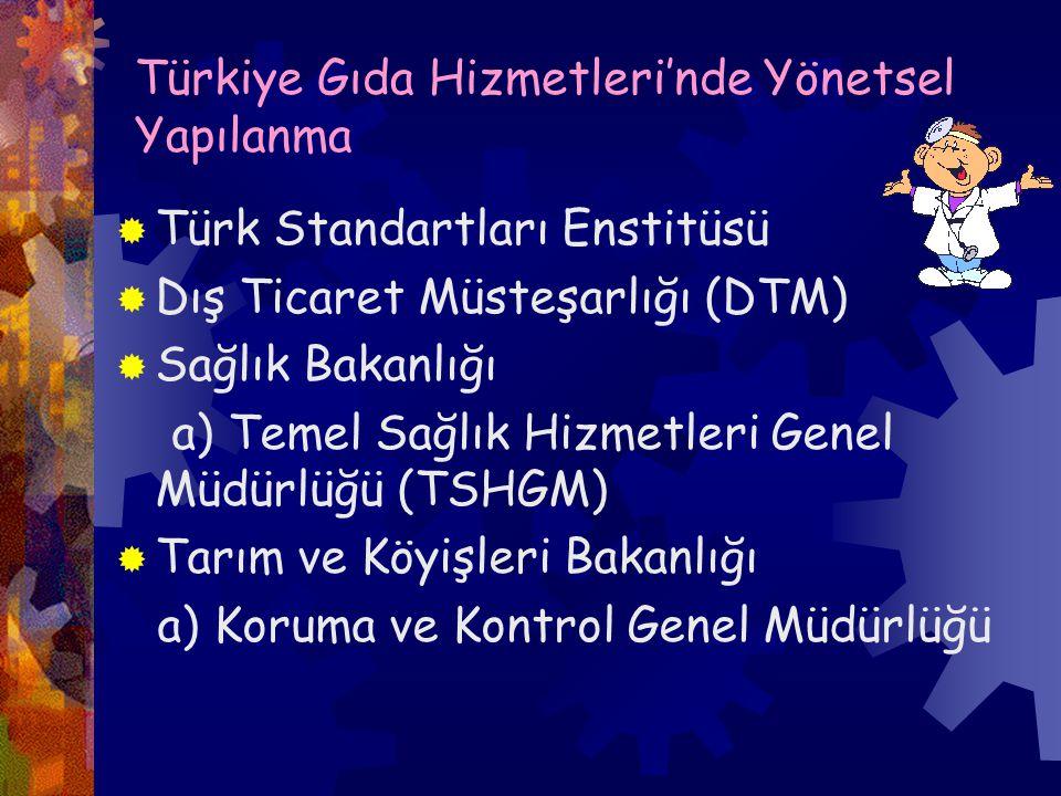 Türkiye Gıda Hizmetleri'nde Yönetsel Yapılanma