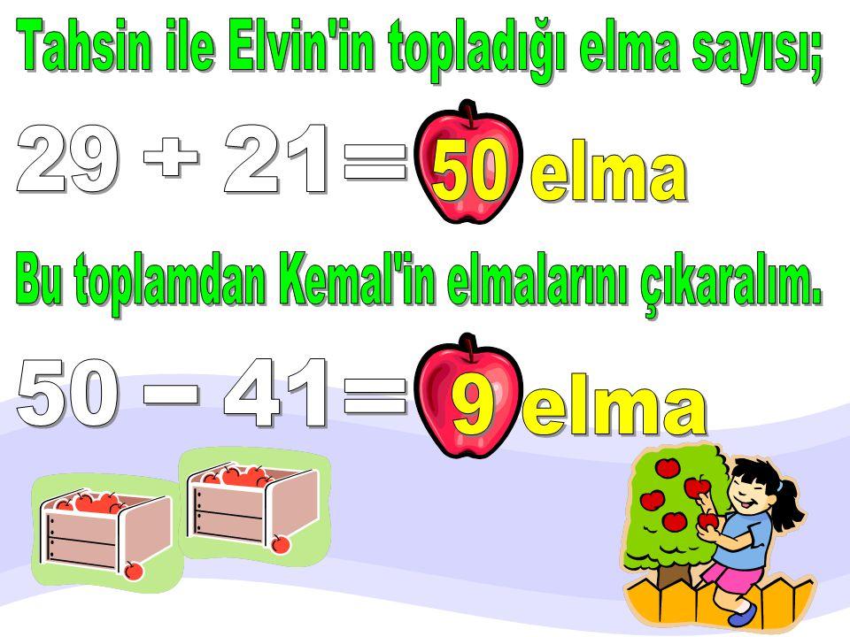 Tahsin ile Elvin in topladığı elma sayısı;