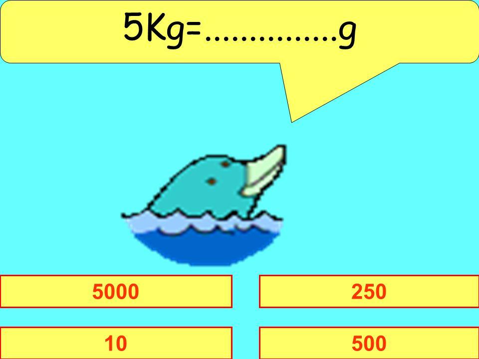 5Kg=...............g 5000 250 10 500