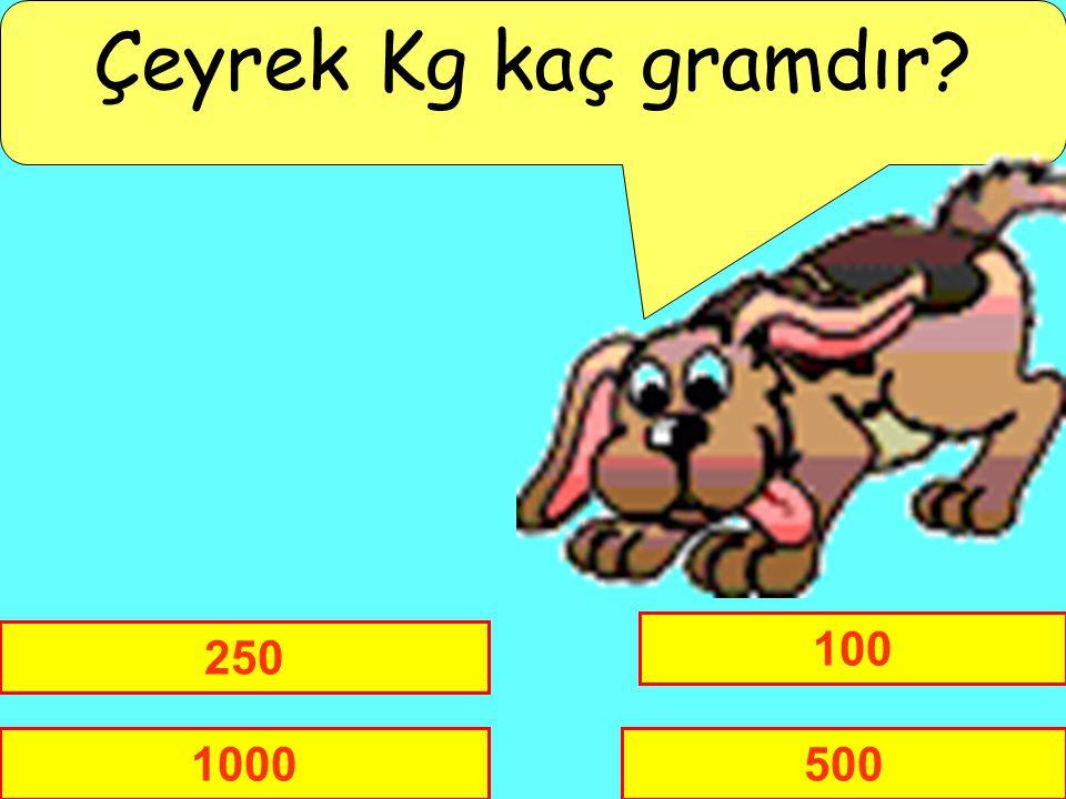 Çeyrek Kg kaç gramdır 100 250 1000 500