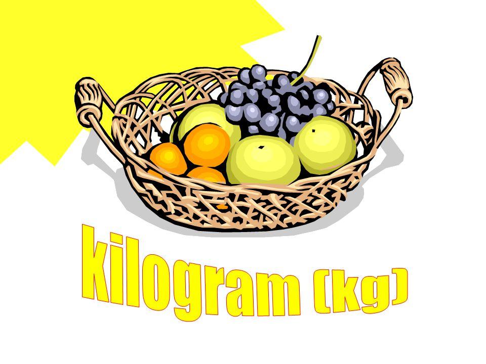 kilogram (kg)