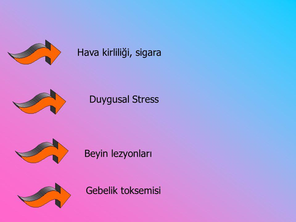 Hava kirliliği, sigara Duygusal Stress Beyin lezyonları Gebelik toksemisi