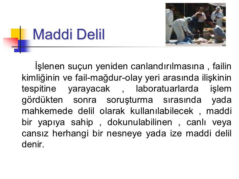 Maddi Delil