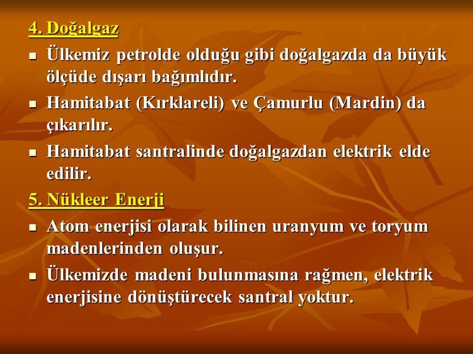 4. Doğalgaz Ülkemiz petrolde olduğu gibi doğalgazda da büyük ölçüde dışarı bağımlıdır. Hamitabat (Kırklareli) ve Çamurlu (Mardin) da çıkarılır.