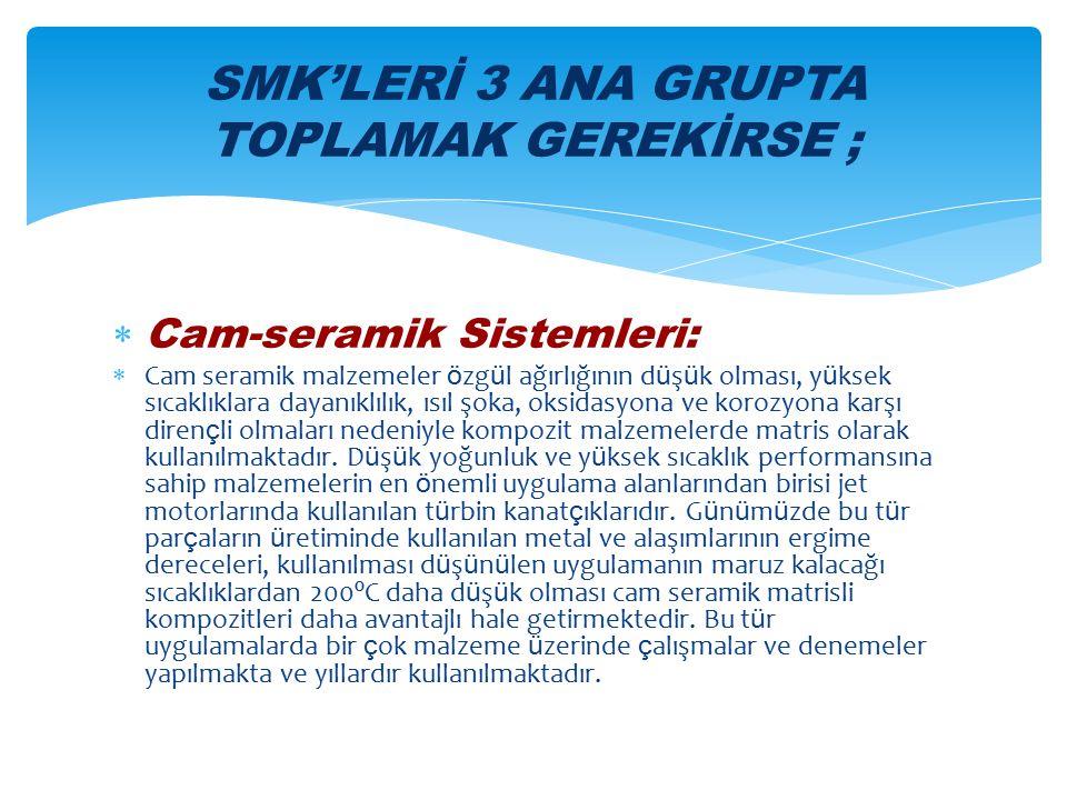 SMK'LERİ 3 ANA GRUPTA TOPLAMAK GEREKİRSE ;