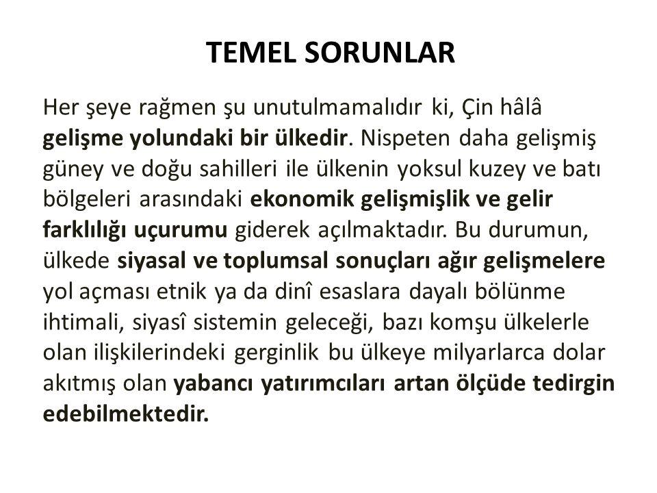 TEMEL SORUNLAR