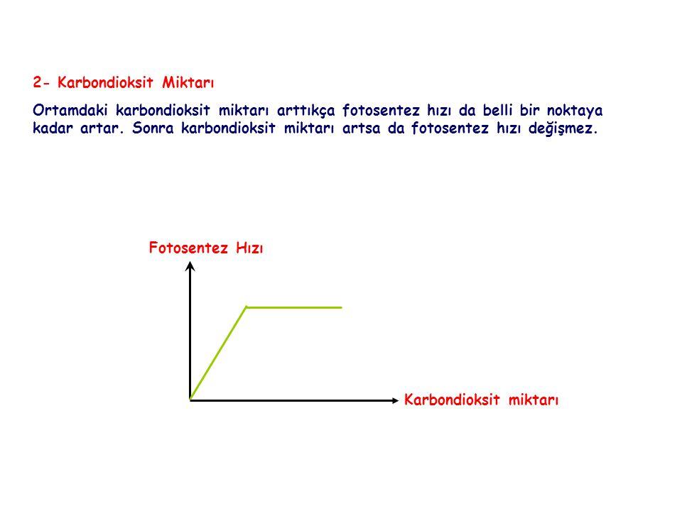FOTOSENTEZ 2- Karbondioksit Miktarı.