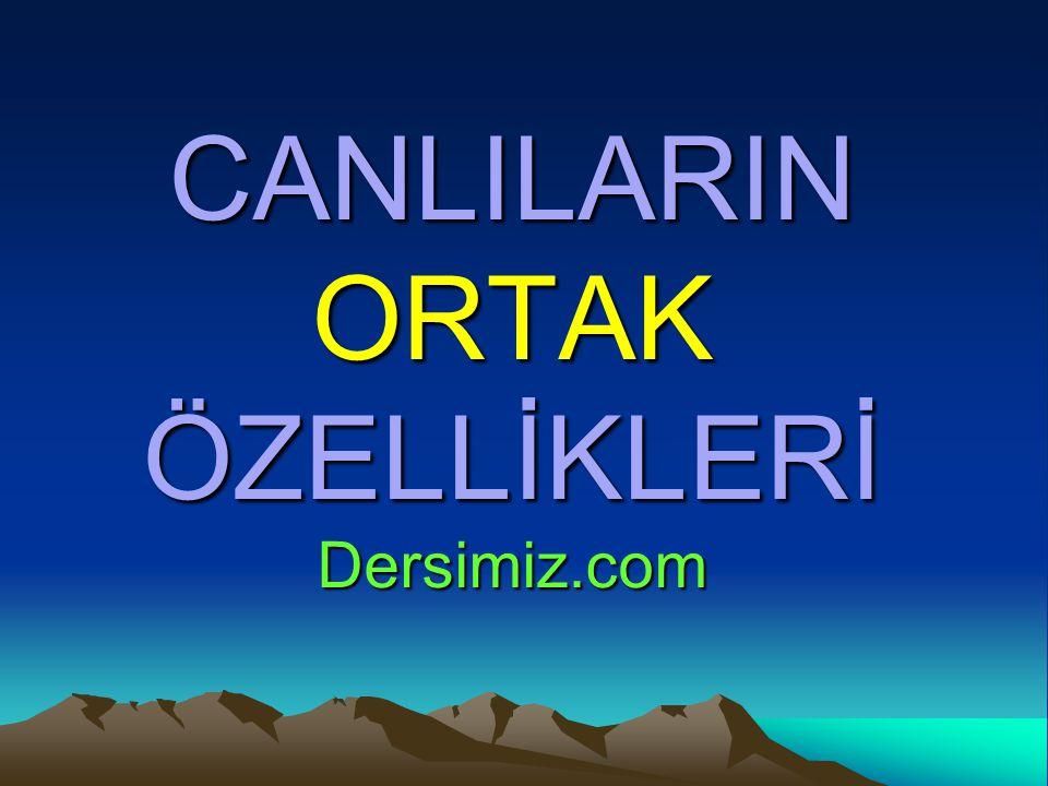 CANLILARIN ORTAK ÖZELLİKLERİ Dersimiz.com