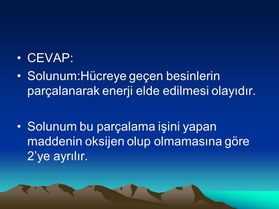 CEVAP: Solunum:Hücreye geçen besinlerin parçalanarak enerji elde edilmesi olayıdır.