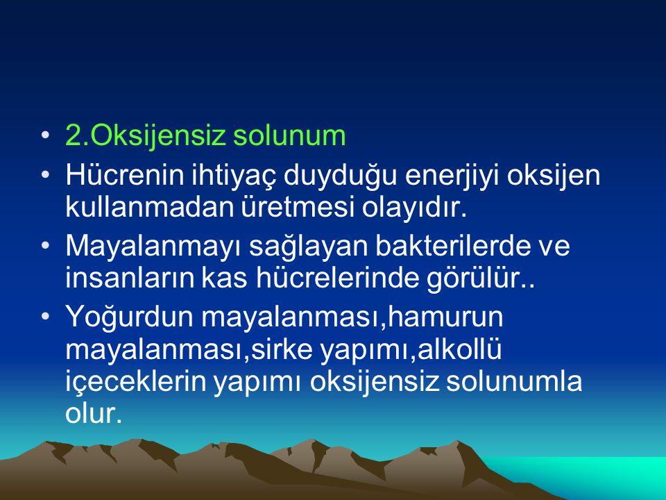 2.Oksijensiz solunum Hücrenin ihtiyaç duyduğu enerjiyi oksijen kullanmadan üretmesi olayıdır.