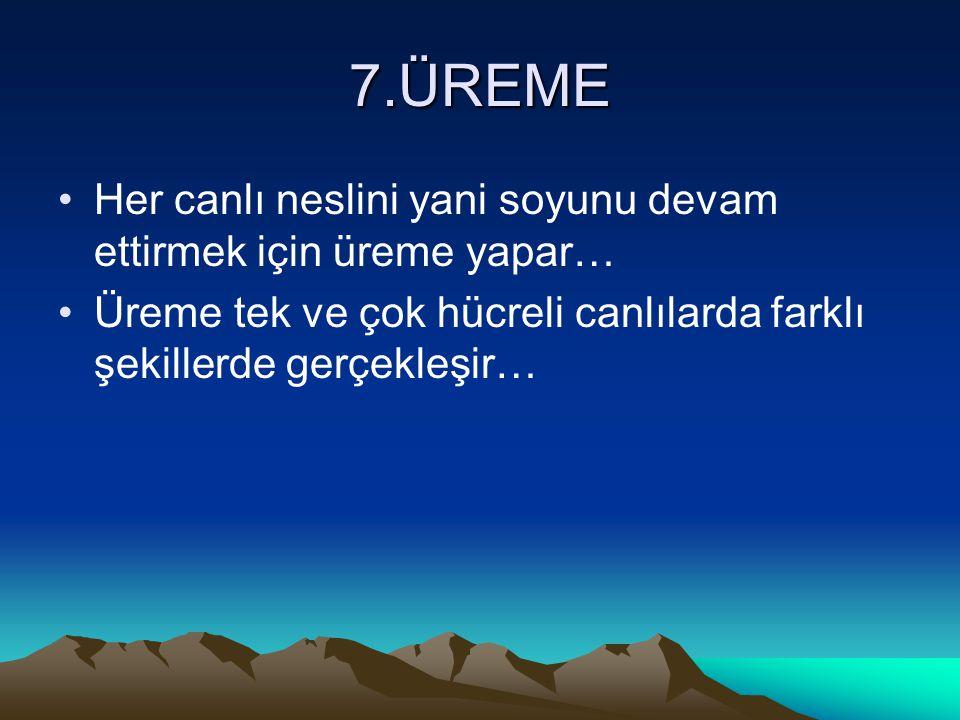 7.ÜREME Her canlı neslini yani soyunu devam ettirmek için üreme yapar…