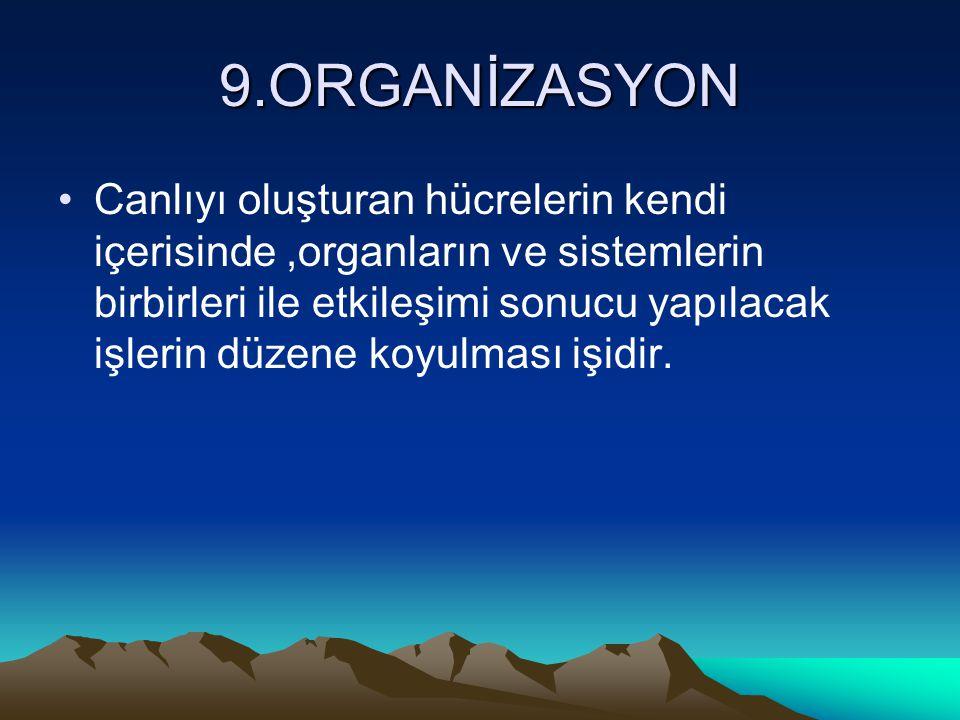 9.ORGANİZASYON