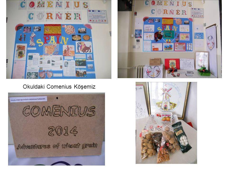 Okuldaki Comenius Köşemiz
