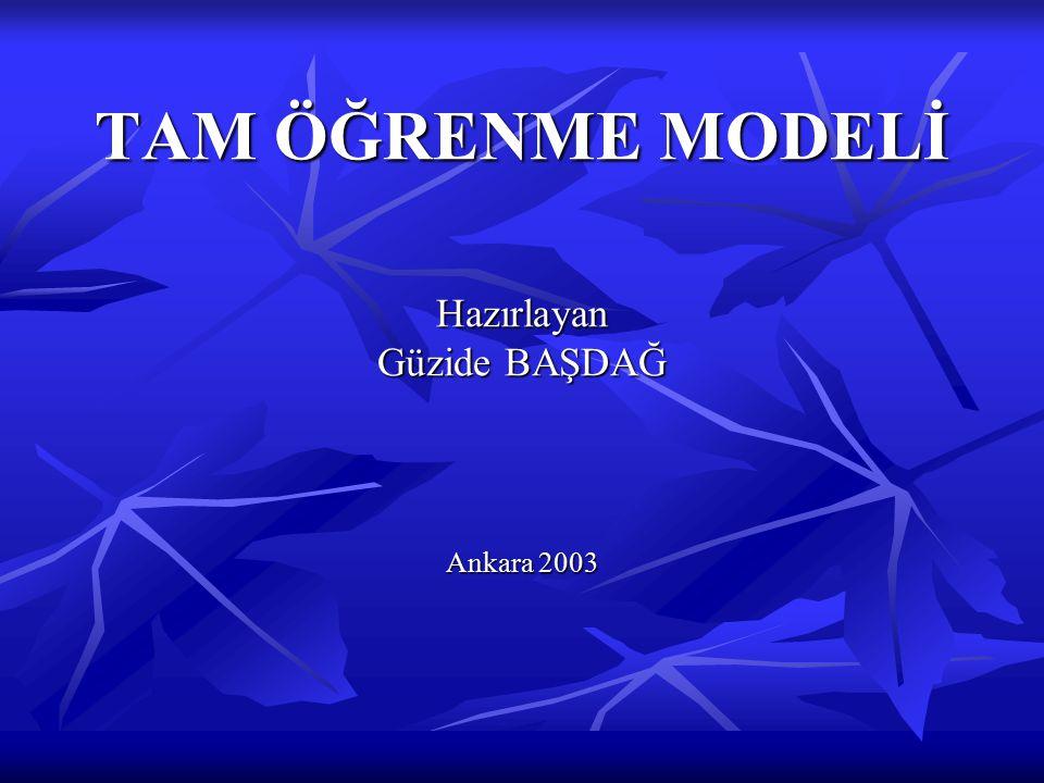 TAM ÖĞRENME MODELİ Hazırlayan Güzide BAŞDAĞ Ankara 2003