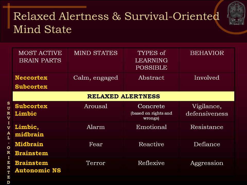 Relaxed Alertness & Survival-Oriented Mind State