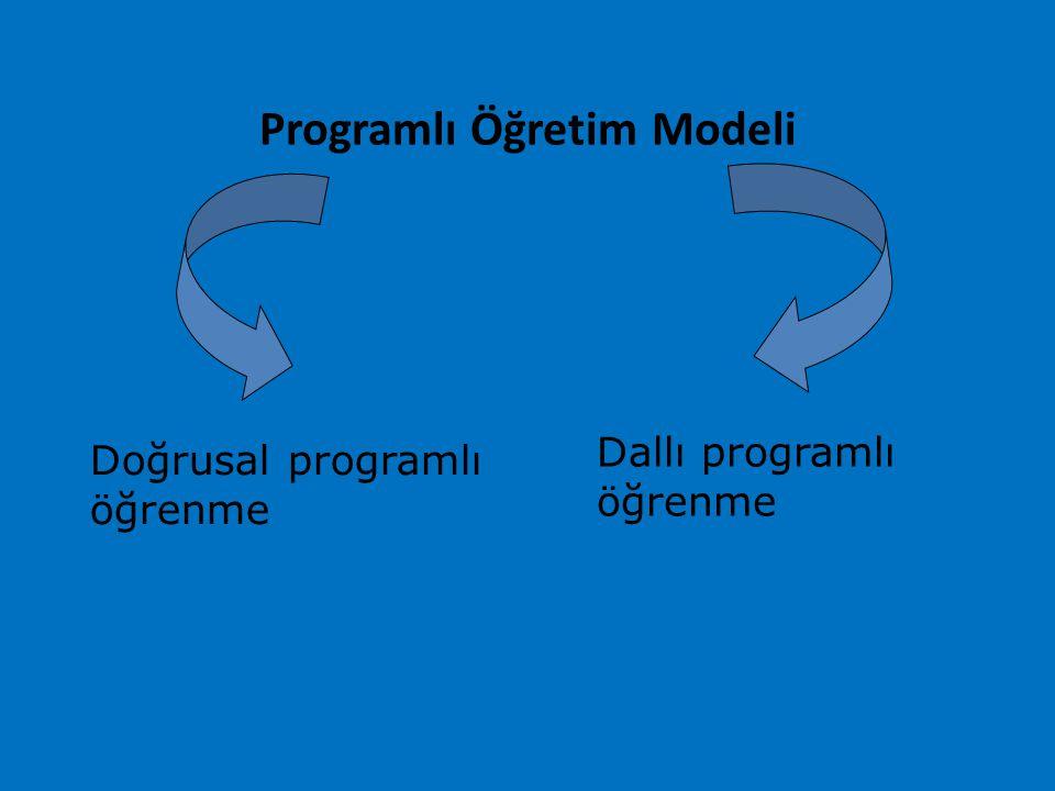 Programlı Öğretim Modeli