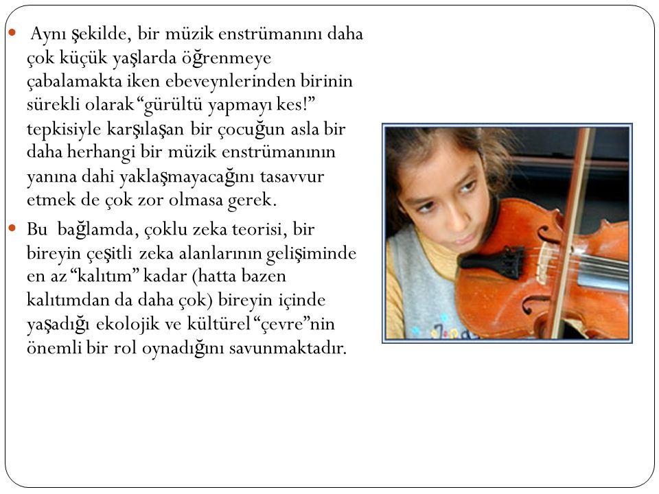 Aynı şekilde, bir müzik enstrümanını daha çok küçük yaşlarda öğrenmeye çabalamakta iken ebeveynlerinden birinin sürekli olarak gürültü yapmayı kes! tepkisiyle karşılaşan bir çocuğun asla bir daha herhangi bir müzik enstrümanının yanına dahi yaklaşmayacağını tasavvur etmek de çok zor olmasa gerek.