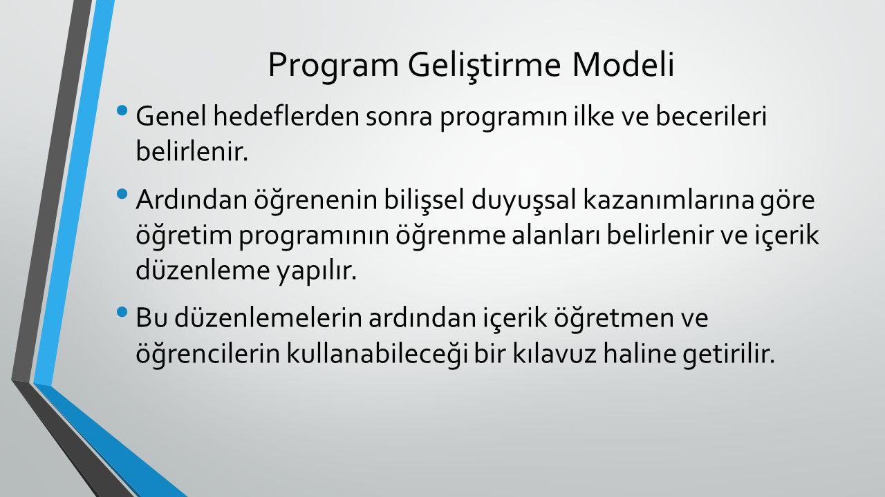 Program Geliştirme Modeli