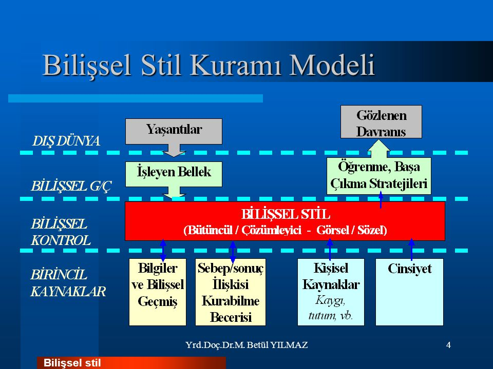 Bilişsel Stil Kuramı Modeli