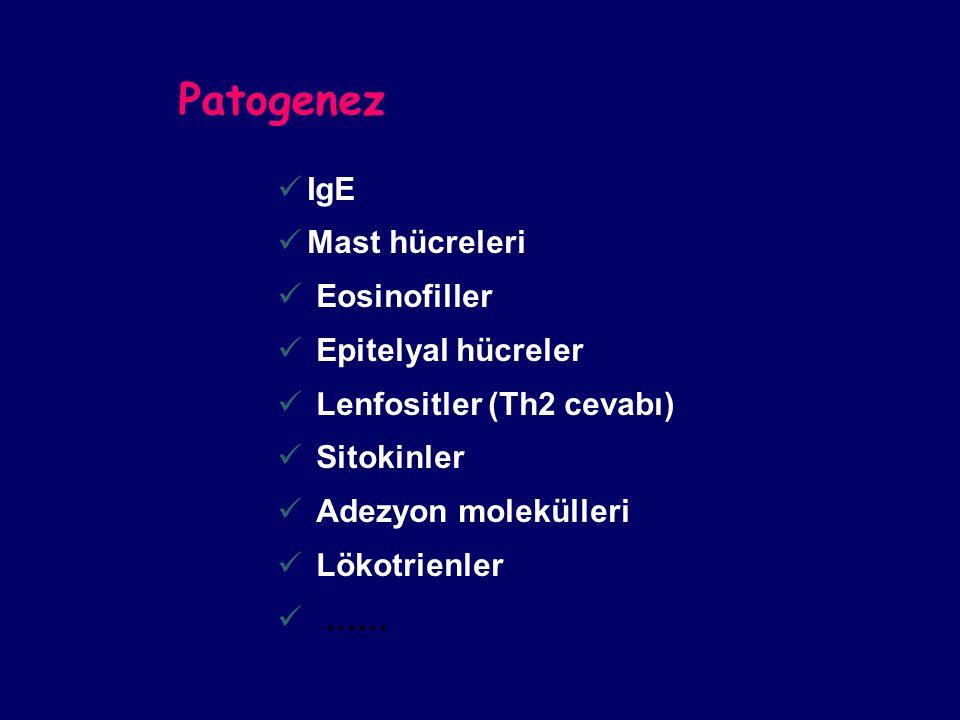 Patogenez IgE Mast hücreleri Eosinofiller Epitelyal hücreler