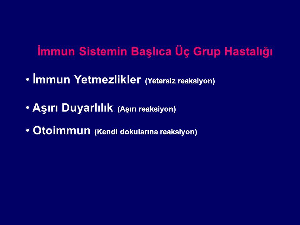 İmmun Sistemin Başlıca Üç Grup Hastalığı