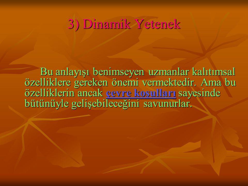 3) Dinamik Yetenek