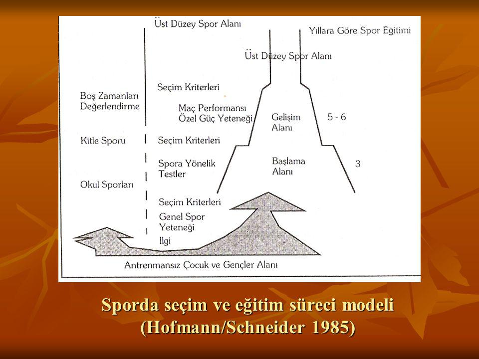 Sporda seçim ve eğitim süreci modeli (Hofmann/Schneider 1985)