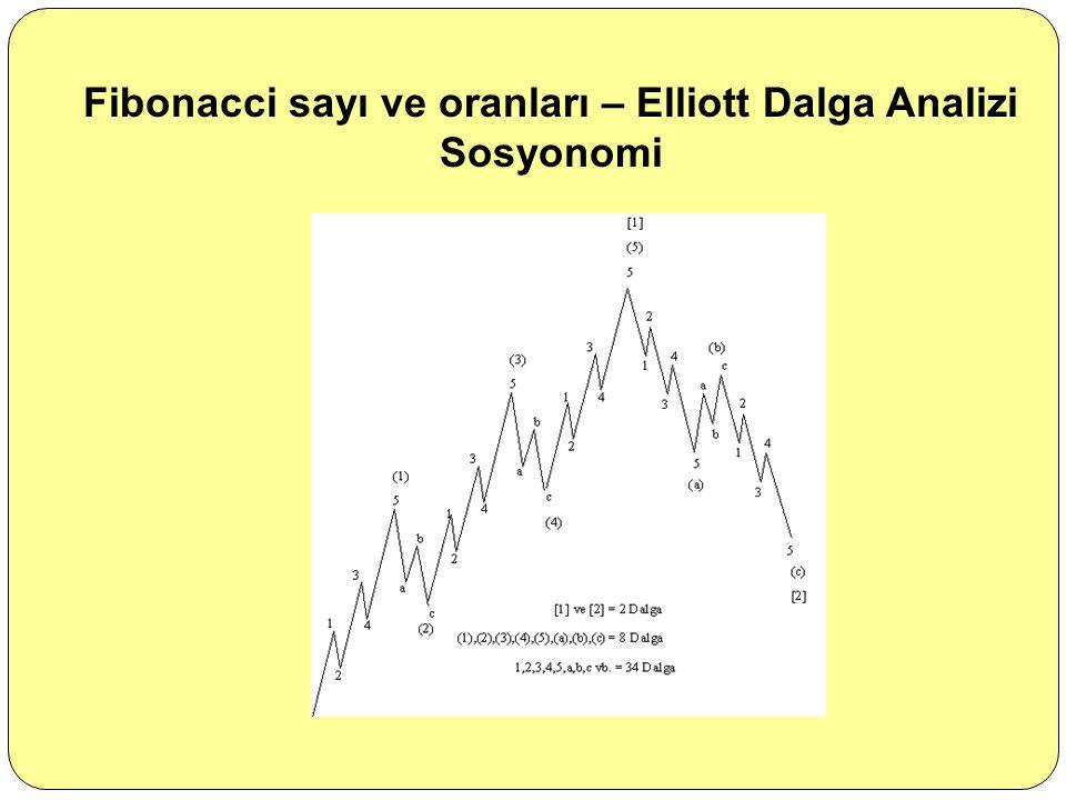 Fibonacci sayı ve oranları – Elliott Dalga Analizi Sosyonomi