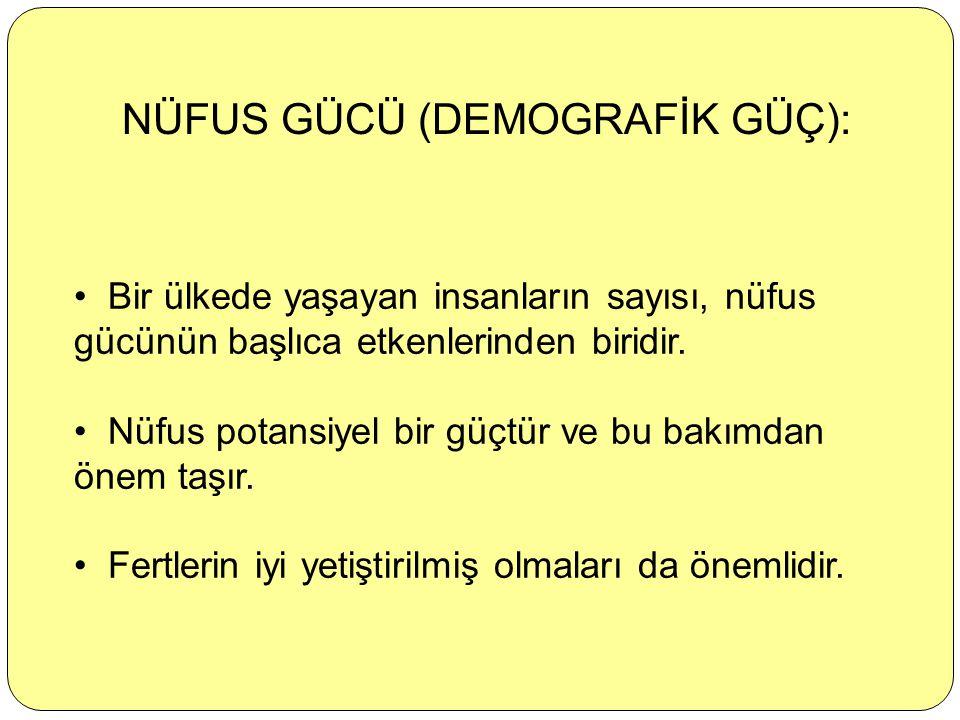 NÜFUS GÜCÜ (DEMOGRAFİK GÜÇ):