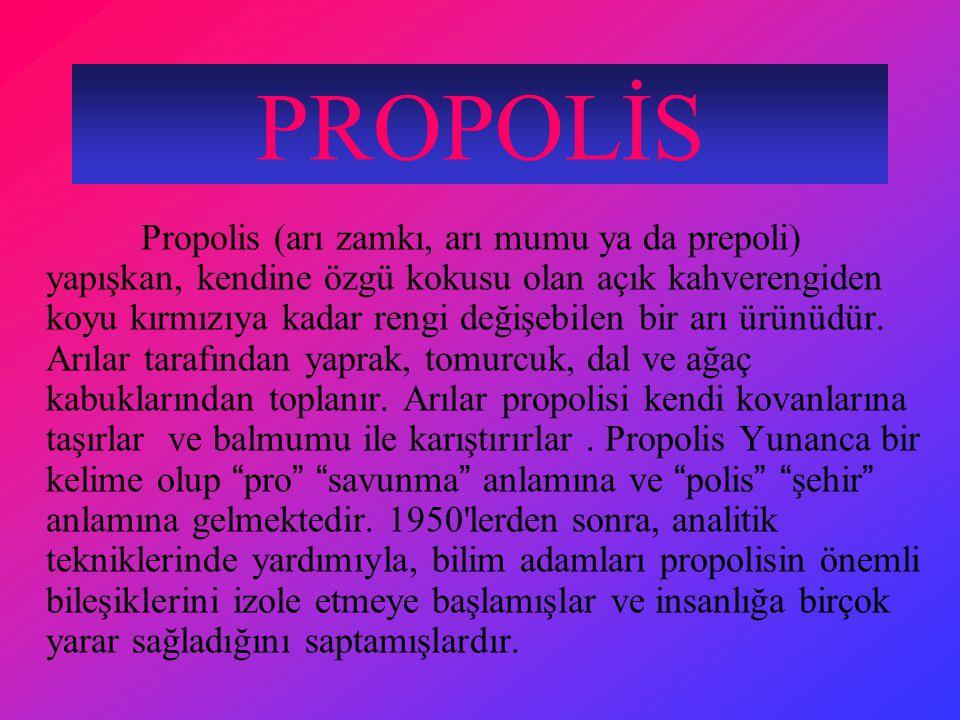 PROPOLİS