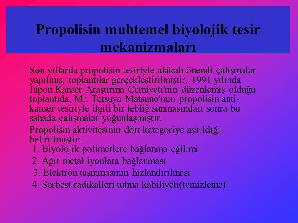 Propolisin muhtemel biyolojik tesir mekanizmaları