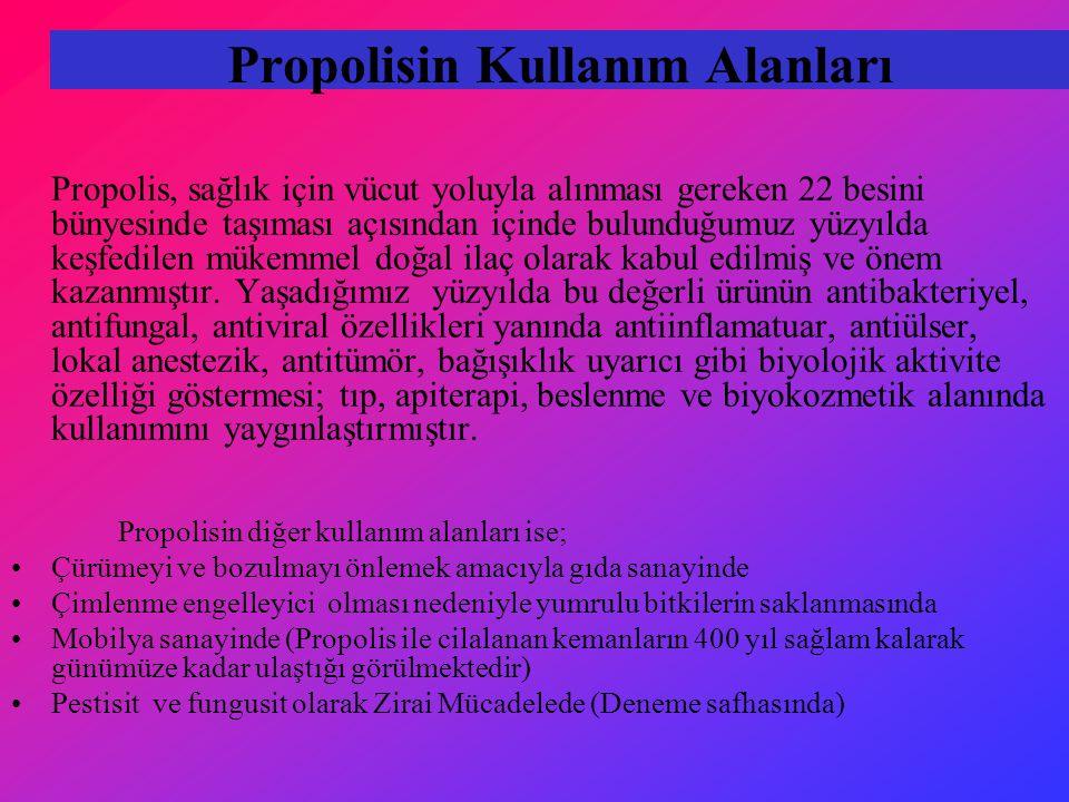 Propolisin Kullanım Alanları