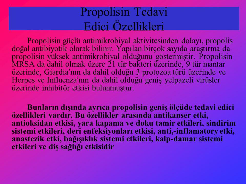 Propolisin Tedavi Edici Özellikleri